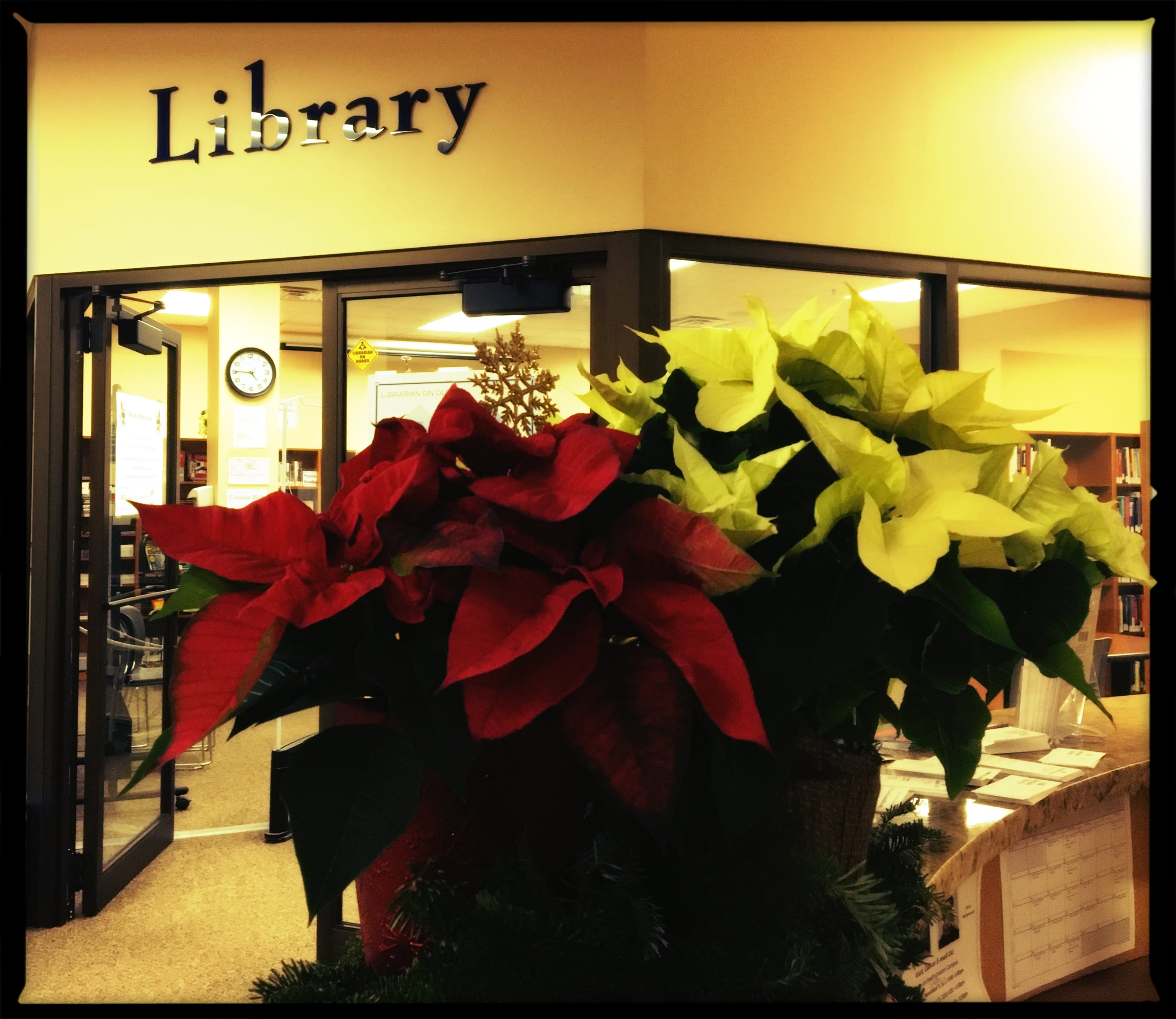 xmas library-min